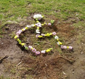 lovely arrangement of flowers in the shape of the disability symbol - possibly a good book cover for the 0911 book ?